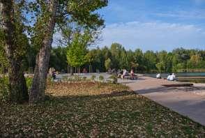 Park Lisiniec